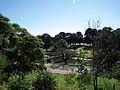 Parramatta River - Parramatta, NSW (7834150574).jpg
