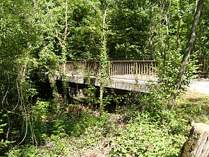 Satigny - Bridge and forest near Satigny