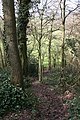 Path Down Through Berrow Wood - geograph.org.uk - 710263.jpg