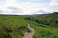 Path to Bronte Bridge (3660554310).jpg