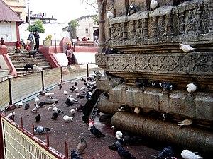 Kamakhya Temple - The adhisthana of the Kamakhya temple indicates that the original temple was of Nagara style