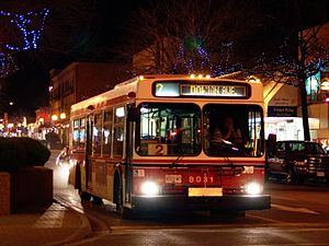 Penticton Transit System - Image: Penticton Transit 8031