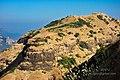 Pep killa,Fort,Matheran - panoramio (2).jpg