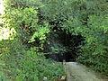 Petit ruisseau de Neyron (Ain).JPG