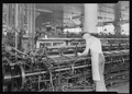 Philadelphia, Pennsylvania - Hosiery. Minnesac Mills. (Man working over long row of machines.) - NARA - 518691.tif