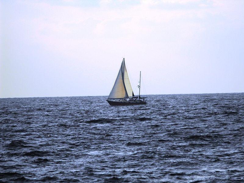 מפרשית בלב ים