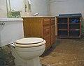 Pittsburgh toilet.jpg