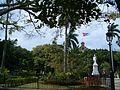 Place plantée à la Havane Cuba.JPG