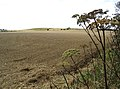 Ploughed and rolled field near Park Head Farm - geograph.org.uk - 547503.jpg
