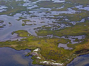 Plum Tree Island National Wildlife Refuge, VA. Credit- USFWS (11805434276).jpg