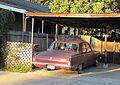 Plymouth Valiant (1965) with Chihuahua.jpg
