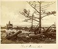 Point Pinos Lighthouse 1871.jpg