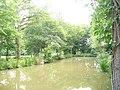 Pond in Danes Wood - geograph.org.uk - 1363830.jpg