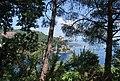 Portofino 22 Maggio 2011 - panoramio.jpg