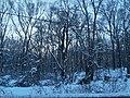 Post-Snurlough along Fort Hunt Rd., Mount Vernon District Park.jpg