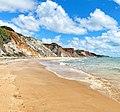 Praia de arapuca paraiba.jpg