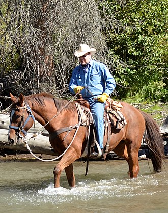 Albert II, Prince of Monaco - Albert rides through a river on a guided tour in the Shoshone National Forest in the U.S., September 2013