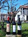 Prokupac varieties in Seria - Tri crvene Vinarije TEMET - Prokupac Vinarije IVANOVIC - Triada Vinarije VINO Budimir.JPG
