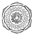 Punica granatum flowerdiagram.png
