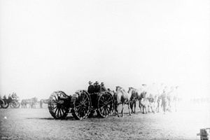 QF 4.5-inch howitzer - Gun with sand tyres around wheels, towed by camels, Egypt circa. 1915–1916