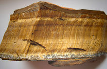 """Photograph of a chunk of rock containing horizontal bands which contain golden fibers which are positioned vertically within the bands"""