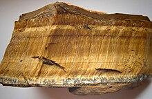 """""""Photographie d'un morceau de roche contenant des bandes horizontales contenant des fibres dorées disposées verticalement à l'intérieur des bandes"""""""