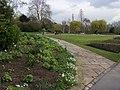 Queen Mary's Garden - geograph.org.uk - 820756.jpg