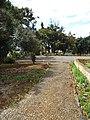 Quinta de São Roque, Funchal - 2012-02-29 - DSC04407.jpg
