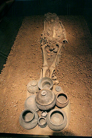 Qujialing culture - Image: Qujialing Culture Skeleton & Burial Vessels