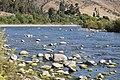 Río Choapa Coquimbo Chile 17.jpg