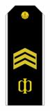 RFNAVYSH-PO1