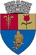 Piteşti coat of arms
