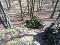 Racławice, Poland - panoramio (2).jpg
