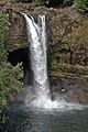 Rainbow Falls Hawaii.jpg
