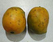 Raspuri Mangoes.jpg
