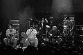 Rawa Blues Festival Asylum Street Spankers 012.jpg