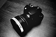 Rebel XT + 50mm f1.2L (35655).jpg