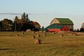 Red Barn Ontario (2231)-Relic38.jpg