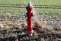 Red fire hydrant in Thuringia, near Greiz (Barras).JPG