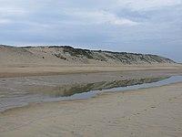 Reflet de la dune de Capbreton dans une baïne.jpg