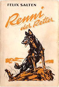 Renni the Rescuer cover