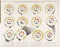 Report on the mortality of cholera in England Wellcome L0049743.jpg