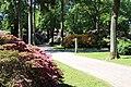 Rhododendronpark Bremen 20090513 272.JPG