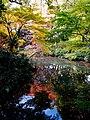 Rikugi-en Gardens, Tokyo; November 2012 (07).jpg
