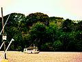 Rio Marajoara.JPG