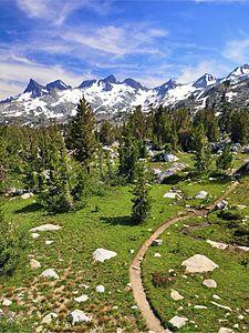 pacific crest trail wild  Il Pacific Crest Trail...