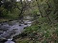 River Blyth Humford Woods - geograph.org.uk - 273694.jpg