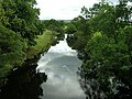 River Forth From Cardross Bridge - geograph.org.uk - 234965.jpg