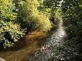 River Teign - geograph.org.uk - 991976.jpg