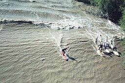 surfing en el delta del rio amazonas